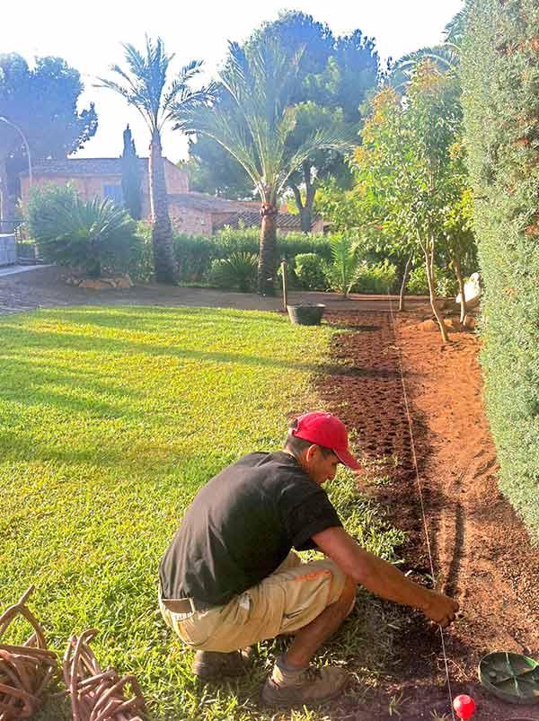 Gartenarbeiten im Sommer